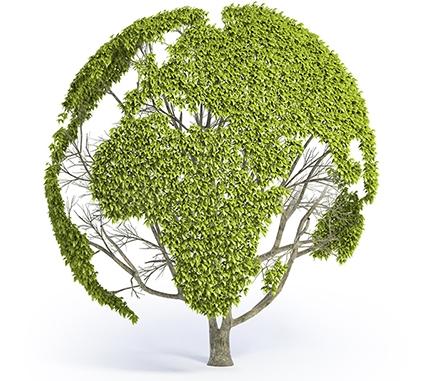 settore-green